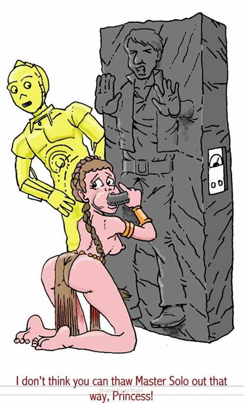leia princess wardrobe metal malfunction bikini Fate go minamoto no raikou