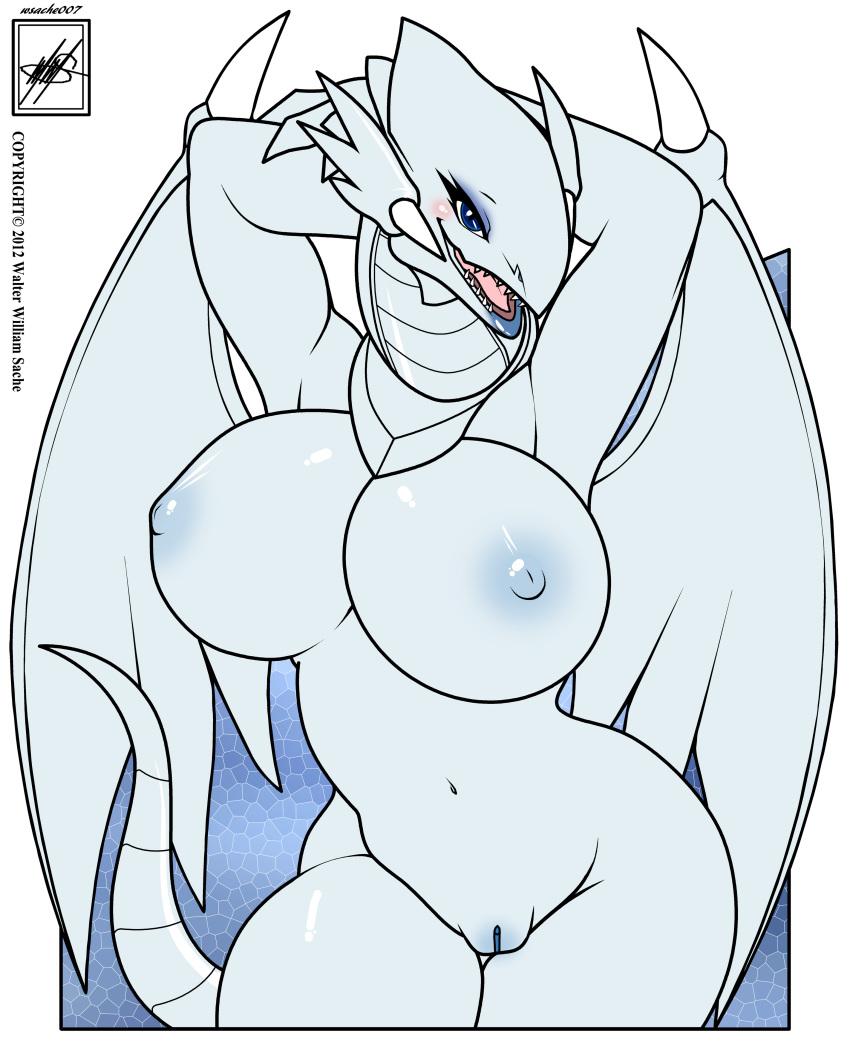 white blue eyes dragon Youkoso! sukebe elf no mori e hitomi